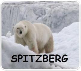 Vign_spitz3